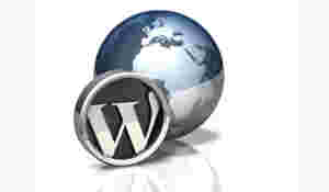 Cara membuat website WordPress profesional