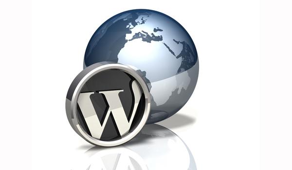 Cara membuat website WordPress profesional