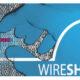 Cara Menggunakan Wireshark