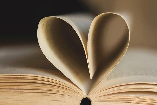 aplikasi_membaca_novel